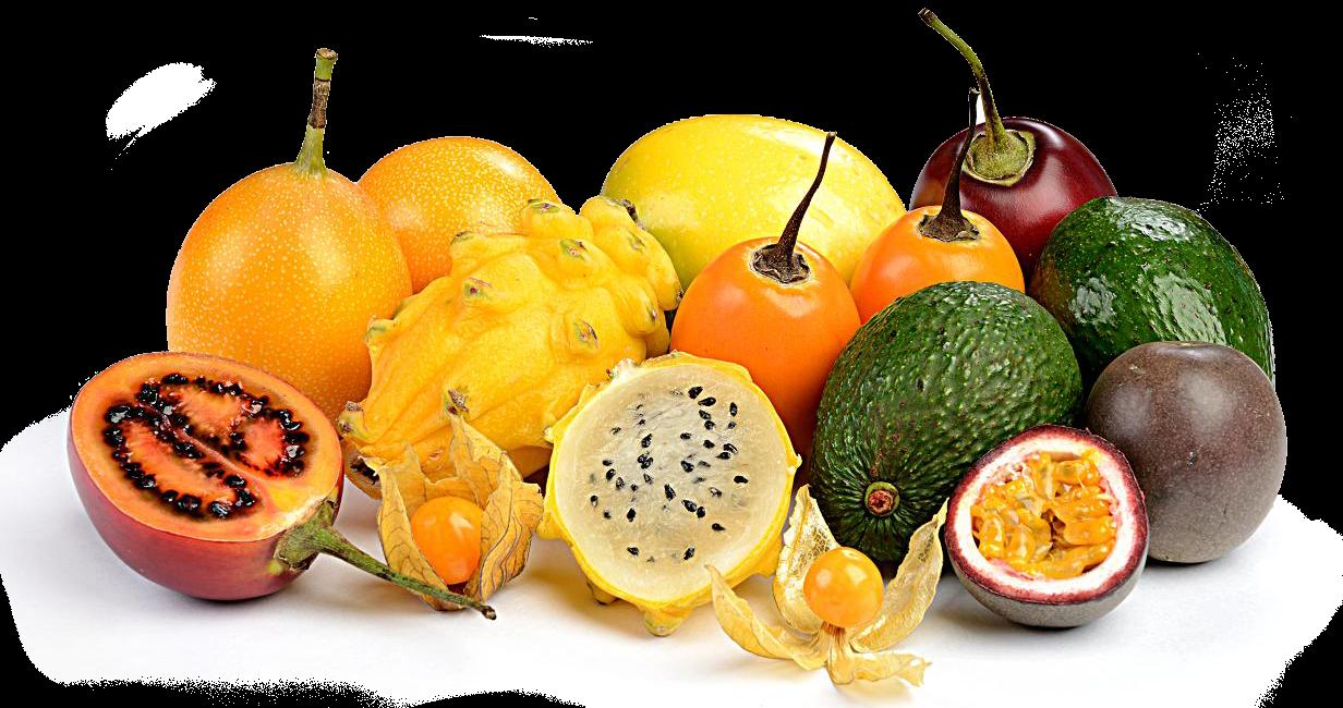 Exportropic exportaci n de frutas ex ticas y tropicales - Frutas tropicales y exoticas ...